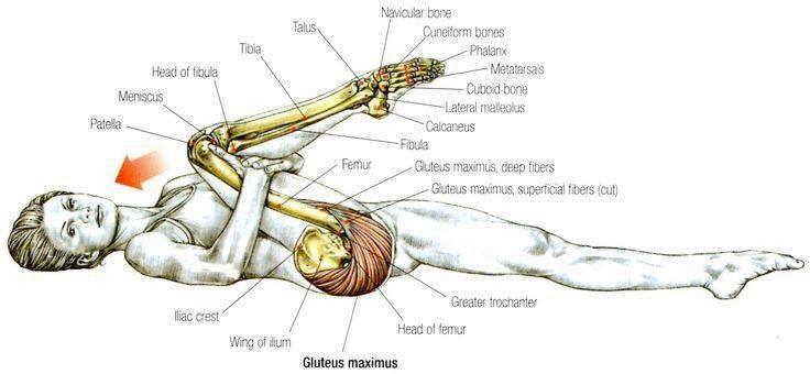 Лечебная гимнастика от стресса и напряжений